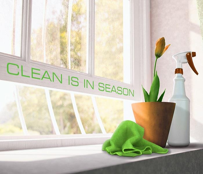 Cleaning Spring Cleaning Tips from the Professionals