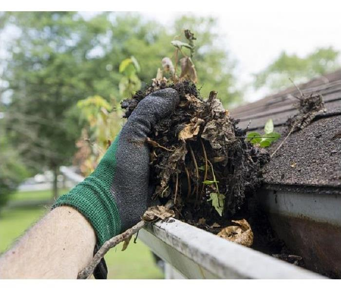 Hand full of debris while cleaning out gutter