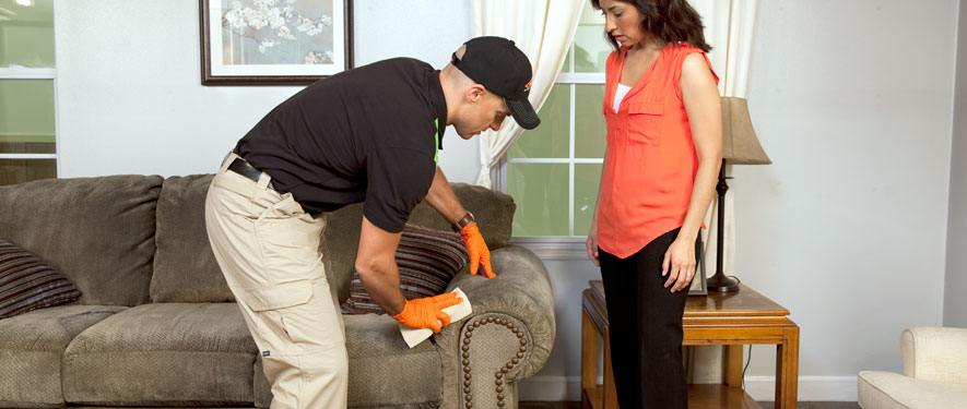 Bridgewater, NJ carpet upholstery cleaning